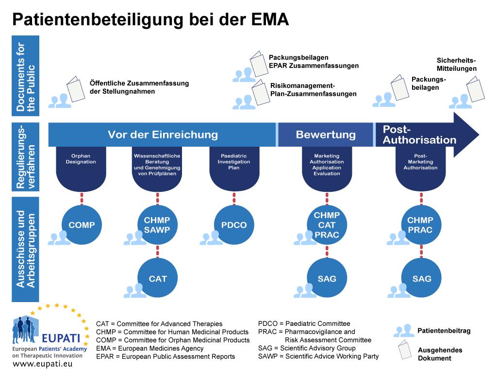 Patienten können bei der EMA auf verschiedenste Arten in das gesamte Regulierungsverfahren einbezogen werden.