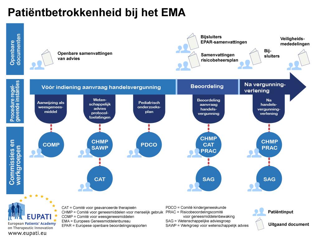 Patiënten kunnen tijdens de goedkeuringsprocedure op diverse manieren betrokken zijn bij het EMA.