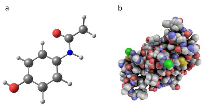Et foto af det kemiske molekyle paracetamol og insulin. Paracetemol er et kunstigt udviklet kemisk molekyle med en mere simple struktur end insulin.