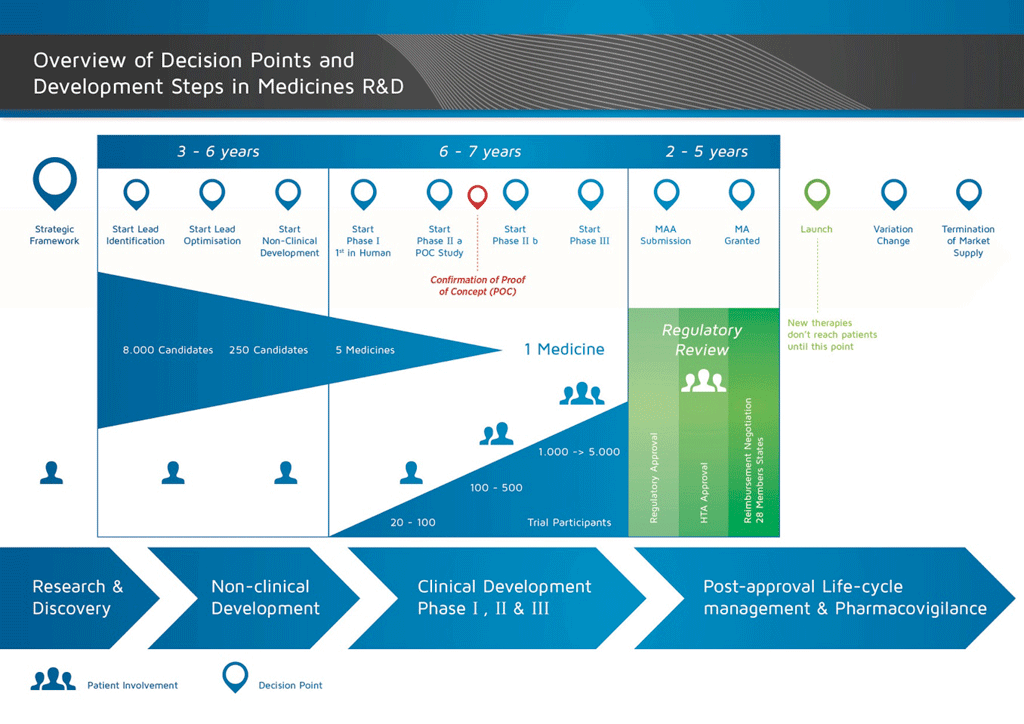A slide describing the decision points and development steps in the research and development (R&D) of medicines. There are four main phases of medicines R&D: Research & Discovery, Non-clinical development, Clinical Development, and post-approval life-cycle management and pharmacovigilance. Reasearch and discovery lasts from three to six years, from the development of the strategic framework to lead identification, at which point the number of medicinal candidates has been narrowed from approximately 8,000 to 250. Non-clinical development also occurs within the first three to six years, from the start of lead optimisation to the end of the non-clinical development period, at which point the 250 candidates have been narrowed down to just five medicines. The next six to seven years are occupied by clinical development. Clinical development is split into three phases: I, II, and III. After the completion of Phase I, the first trials in humans (with approximately 20 to 100 participants), phase IIa begins with a proof of concept study. Phase IIa usually sees testing in 100 to 500 participants. When the Proof of Concept has been confirmed, Phase IIb begins, with clinical trials of between 1,000 and 5,000 participants, narrowing candidates down to just one medicine. Phase III is the largest of trials, and ends in the submission of the medicine for regulatory review. The regulatory review process can take between two to five years. Only after approval from the regulatory boards can the medicine be launched and new therapies made accessible to patients. The review process and launch of the medicine mark the beginning of the post-approval life-cycle management and pharmacovigilance phase, during which change is monitored and managed, and which lasts until the medicine is terminated and removed from the market.