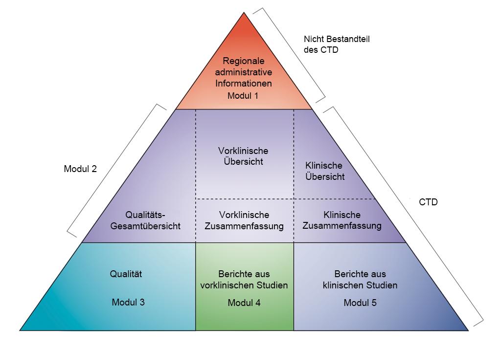Nicht-klinische Entwicklung in CTD-Modulen. Übernommen von ICH CTD (siehe Referenz 1)