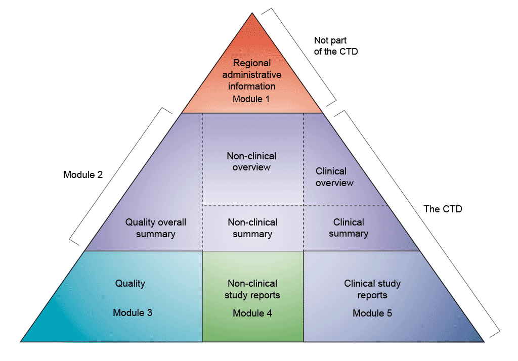 Diagrammatic representation of the common technical document (CTD) modules. The CTD modules are represented here as a pyramid split into three levels. The top of the pyramid is not part of the CTD but represents Module 1: Regional Administrative Information. The second level represents Module 2. It is split into three sections: On the left, Quality overall summary; in the centre, Non-clinical overview and non-clinical summary; and on the right, clinical overview and clinical summary. The bottom of the pyramid is again split into three sections; each section represents an individual module. On the left, Module 3: Quality; in the centre, Module 4: Non-clinical study reports; and on the right, Module 5: Clinical study reports. Non-clinical development thus occupies the centre of the pyramid.