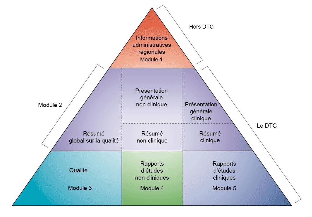 Développement non clinique dans des modules CTD. Adaptation du CTD ICH (voir référence1)