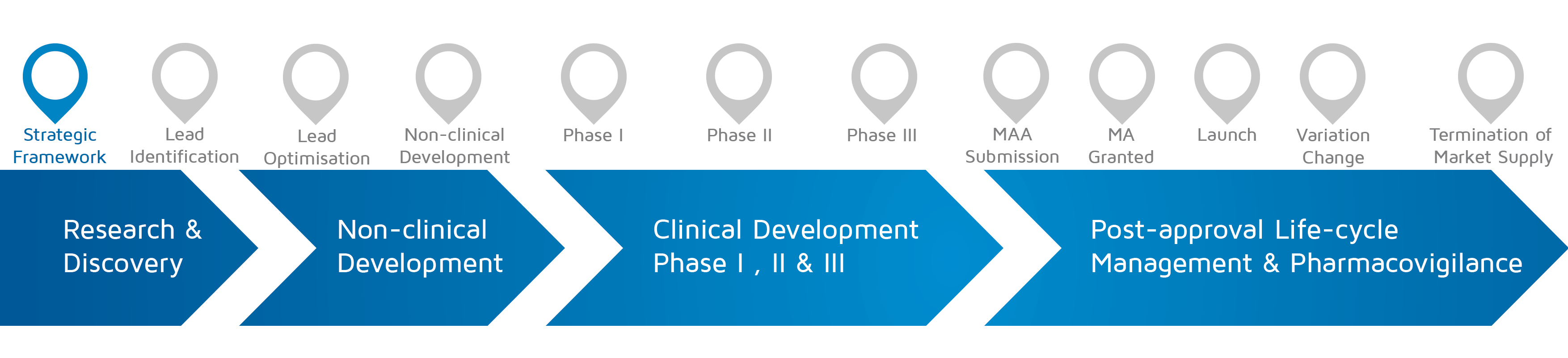 A visual representation of in which phase of medicines research and development process an activity takes place with strategic framework highlighted.
