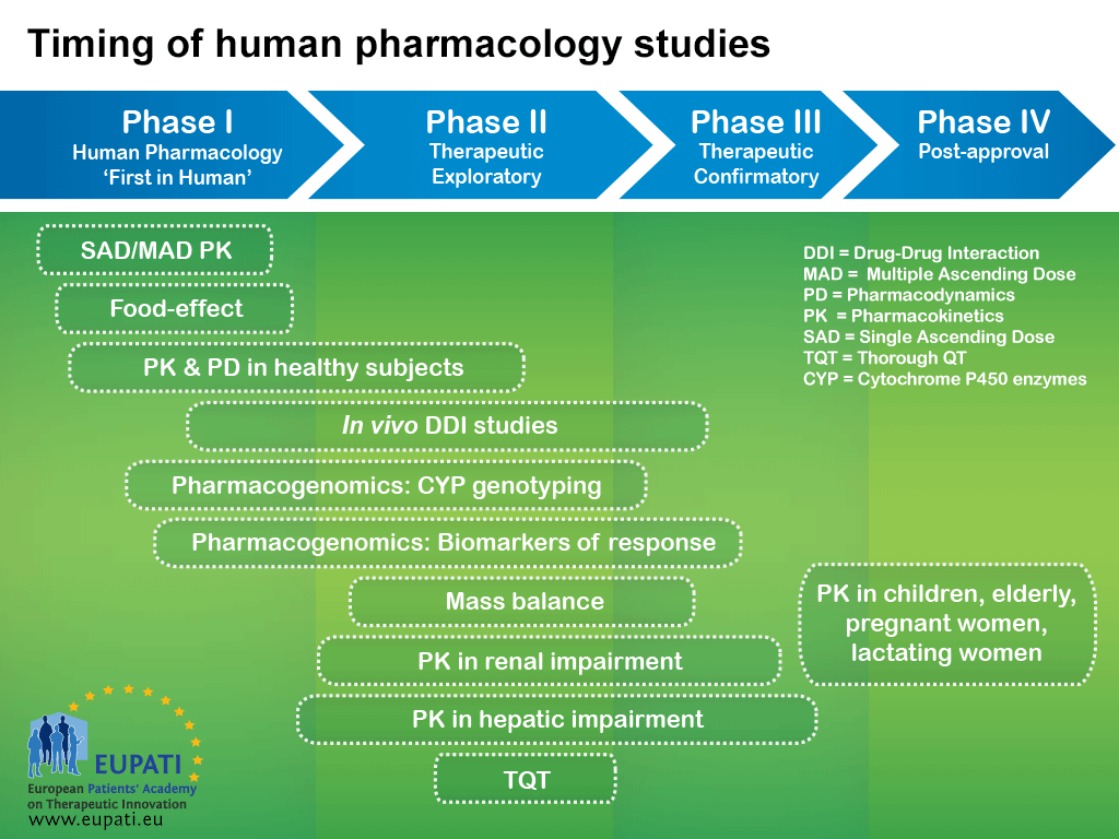 A diagram showing the different types of human pharmacology studies that take place during the clinical development of a medicine. The logic behind representing medicines development in a series of consecutive phases comes from the idea that the results of prior studies should influence the plans for later studies: emerging data will frequently initiate modifications of the development strategies.